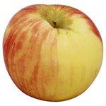 Calories In Honeycrisp Apples